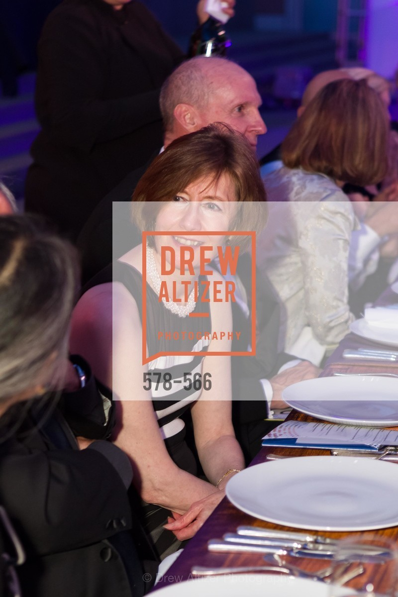 Extras, SAN JOSE MUSEUM OF ART'S Spectrum Gala - 45th Anniversary, September 13th, 2014, Photo