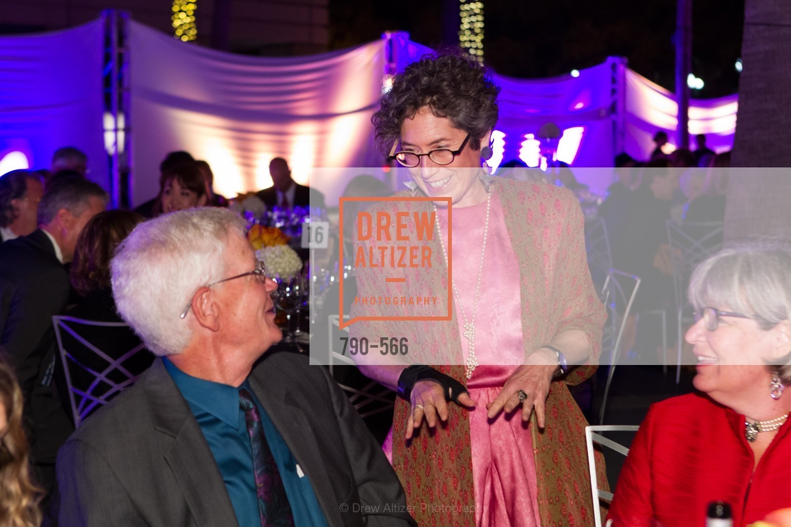 Susan Krane, SAN JOSE MUSEUM OF ART'S Spectrum Gala - 45th Anniversary, US, September 13th, 2014,Drew Altizer, Drew Altizer Photography, full-service agency, private events, San Francisco photographer, photographer california