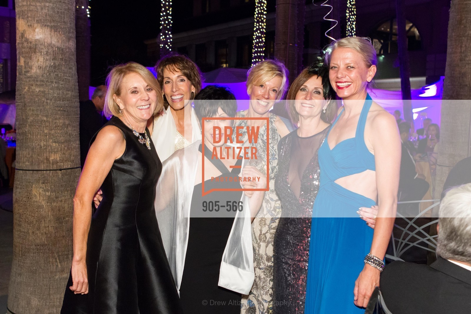 Mary Mocas, Rana Davis, Hidy Shandell, Wanda Kownacki, Aileen Silver, SAN JOSE MUSEUM OF ART'S Spectrum Gala - 45th Anniversary, US, September 13th, 2014,Drew Altizer, Drew Altizer Photography, full-service agency, private events, San Francisco photographer, photographer california