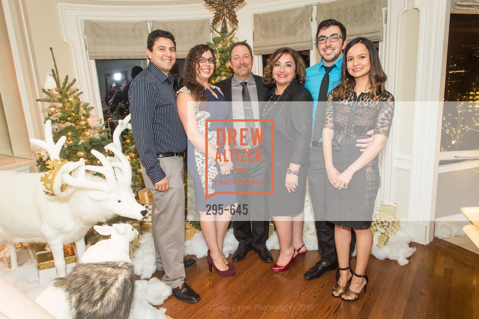 Danny Bauer, Shanna Atherton, Donny Atherton, Susan Atherton, Tracy Atherton, Evan Atherton, Sargam Atherton, Atherton Holiday Party, Private Residence, December 12th, 2015,Drew Altizer, Drew Altizer Photography, full-service agency, private events, San Francisco photographer, photographer california