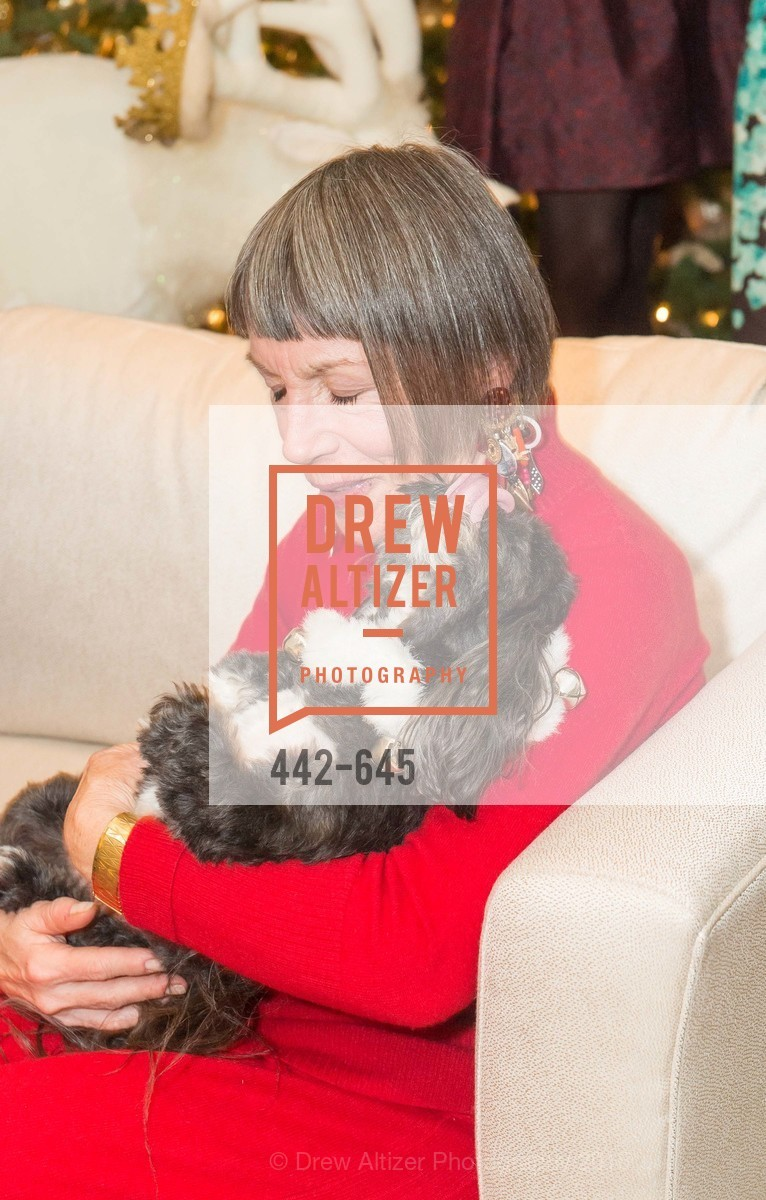 Ann Silbo, Atherton Holiday Party, Private Residence, December 12th, 2015,Drew Altizer, Drew Altizer Photography, full-service agency, private events, San Francisco photographer, photographer california