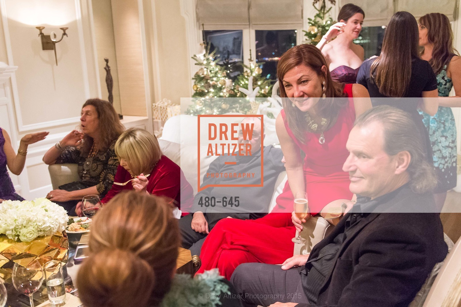 Susie Damilano, Bill English, Atherton Holiday Party, Private Residence, December 12th, 2015,Drew Altizer, Drew Altizer Photography, full-service agency, private events, San Francisco photographer, photographer california