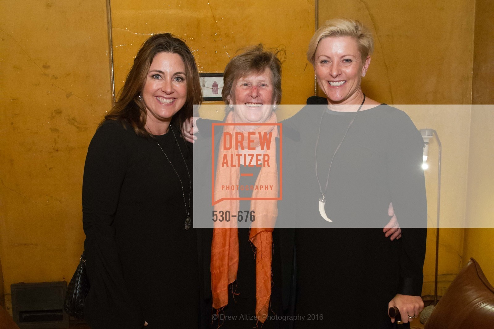 Shawn Pleiman, Carol Casey, Carlie Wilmans, 500 Capp Street Preview Reception, 500 Capp Street Foundation. 500 Capp Street, January 7th, 2016,Drew Altizer, Drew Altizer Photography, full-service agency, private events, San Francisco photographer, photographer california