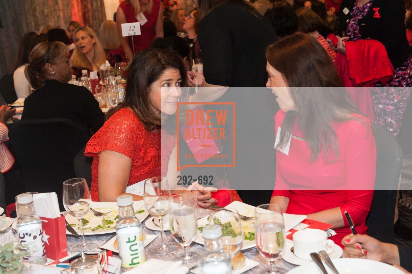 Extras, 2015 GoRed for Women Luncheon, May 2nd, 2015, Photo