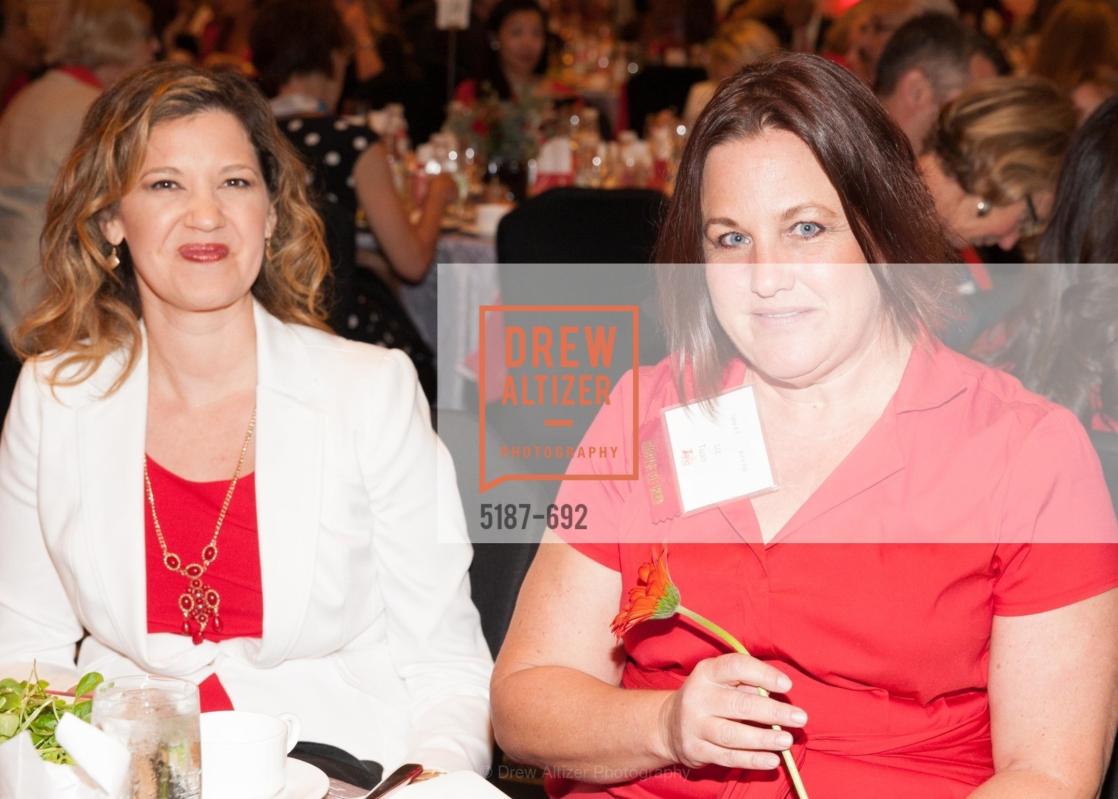 Liz Tuan, 2015 GoRed for Women Luncheon, US, May 1st, 2015,Drew Altizer, Drew Altizer Photography, full-service agency, private events, San Francisco photographer, photographer california