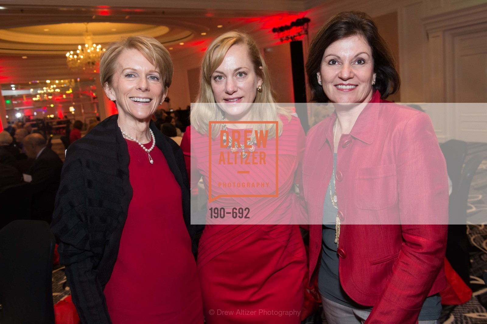 Lisa Fontenot, 2015 GoRed for Women Luncheon, US, May 1st, 2015,Drew Altizer, Drew Altizer Photography, full-service agency, private events, San Francisco photographer, photographer california