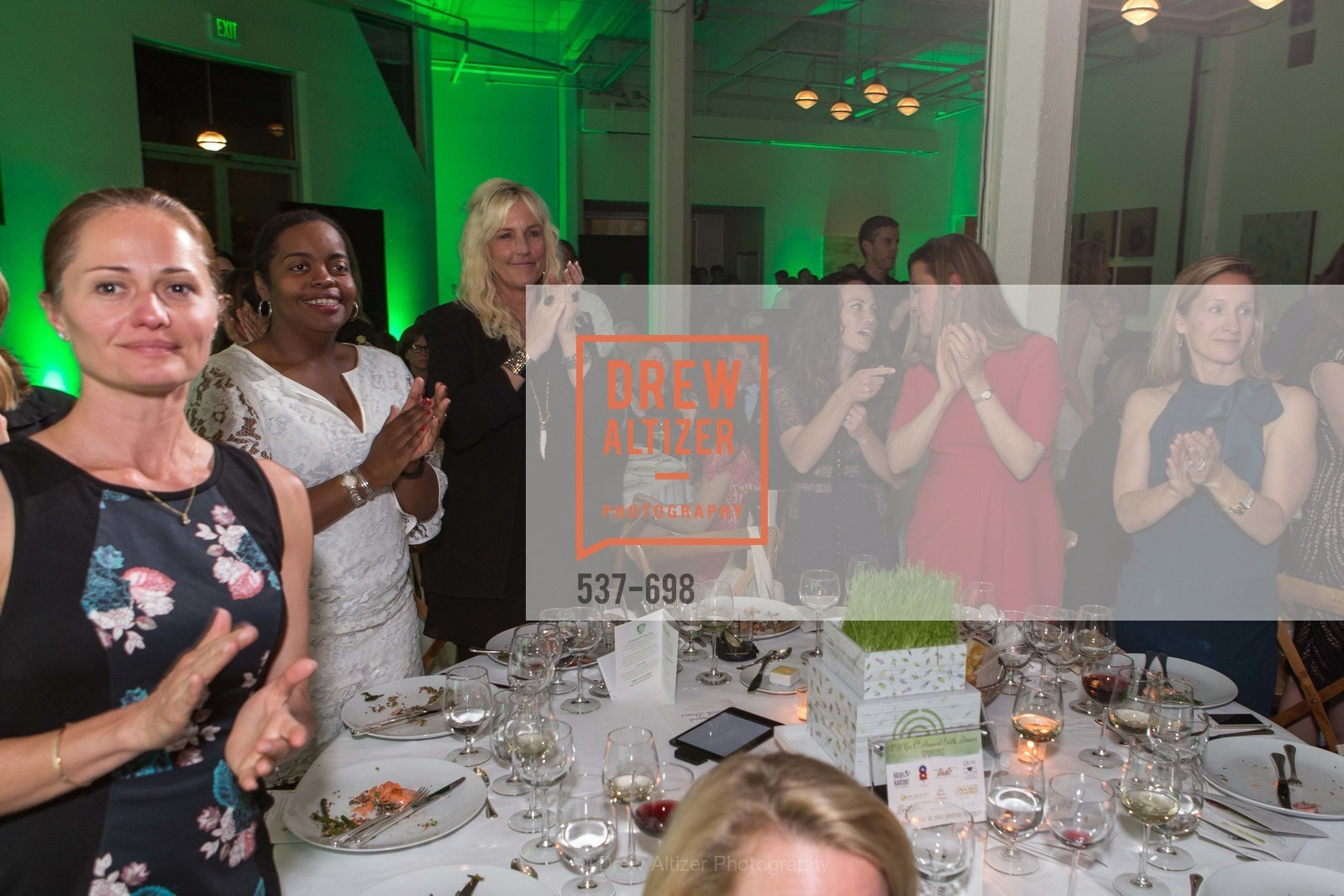 Erin Brockovich, EWG's 6th Annual Earth Dinner, US, May 6th, 2015,Drew Altizer, Drew Altizer Photography, full-service agency, private events, San Francisco photographer, photographer california