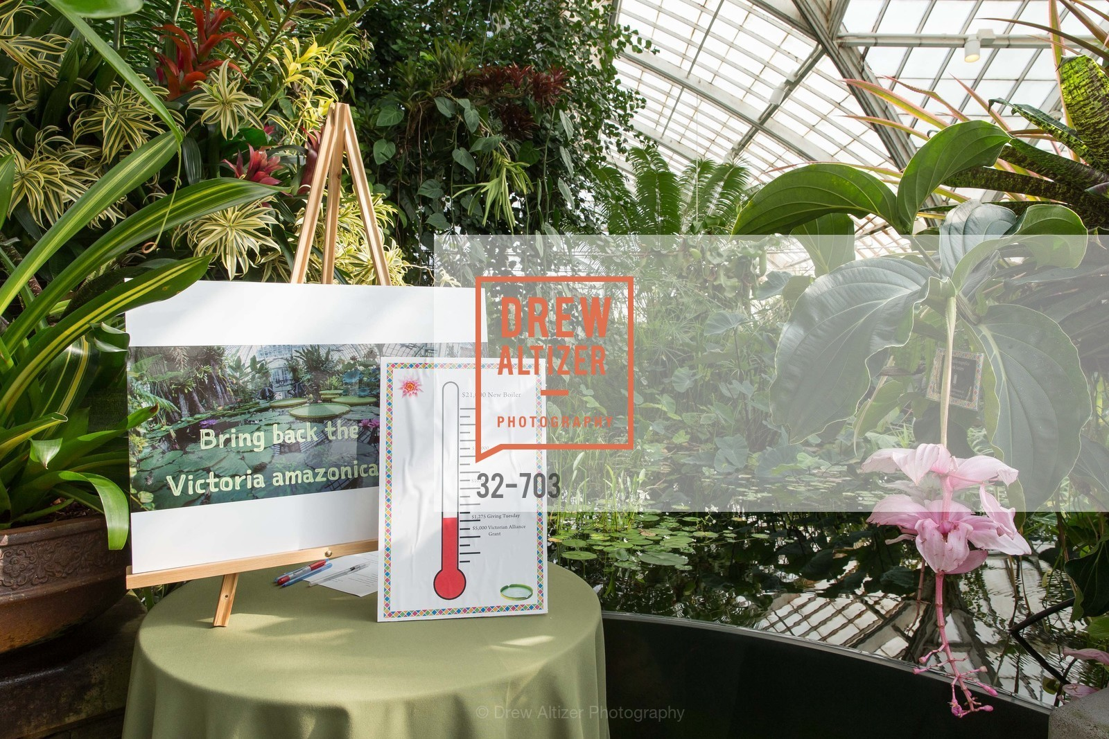 Atmosphere, CONSERVATORY OF FLOWERS Presents