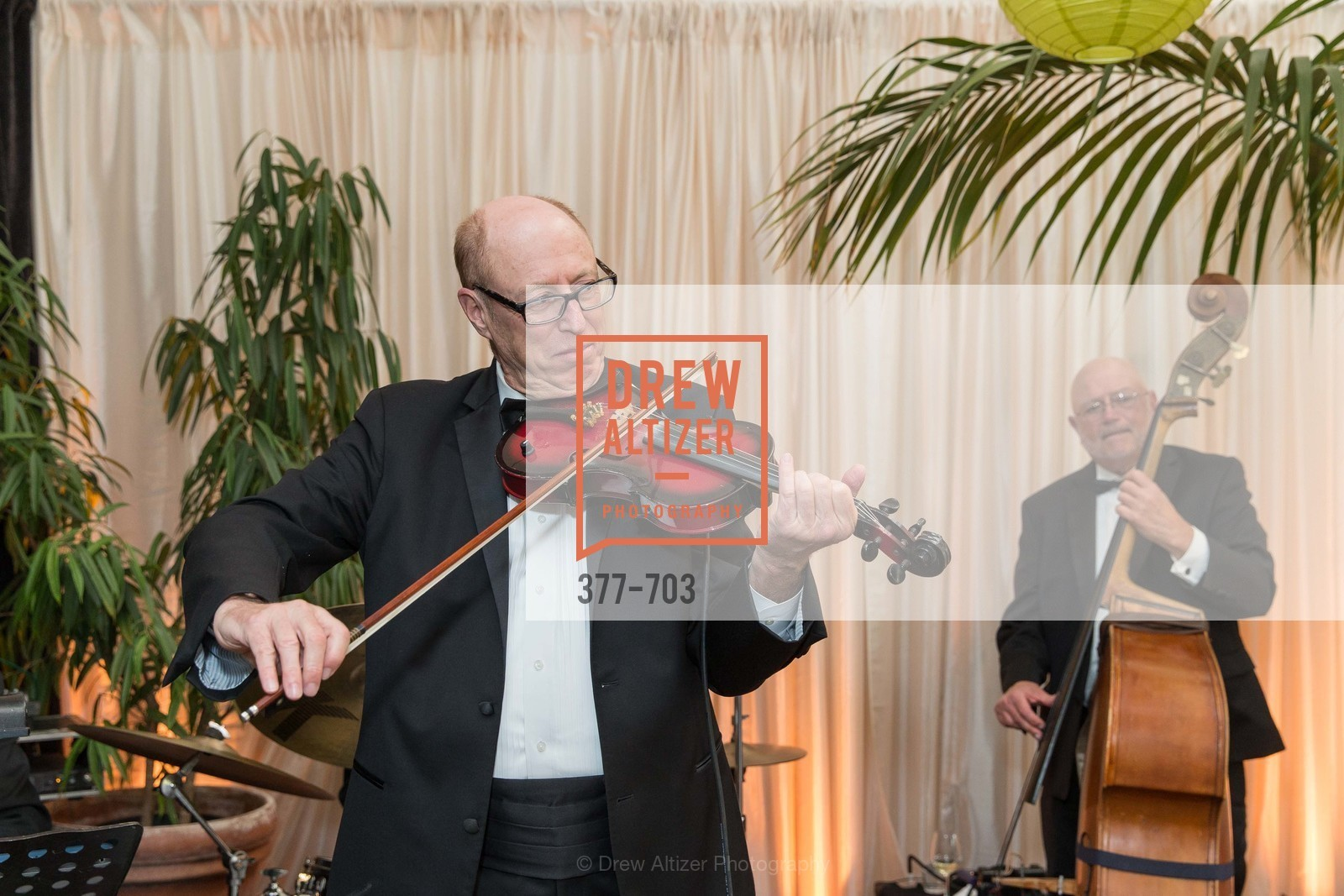 Performance By Dick Bright Orchestra, CONSERVATORY OF FLOWERS Presents