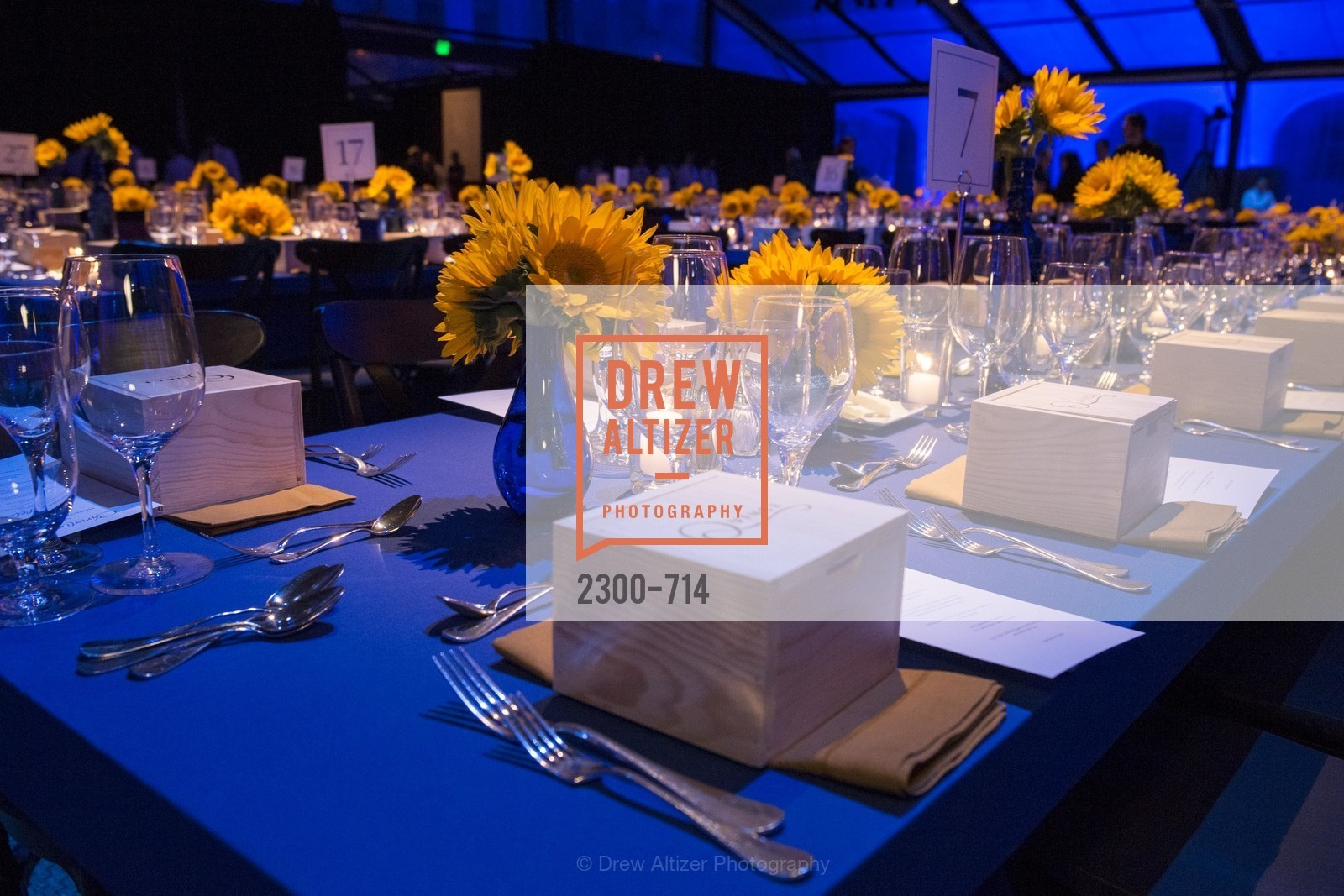 Atmosphere, SFJAZZ Gala 2015 Honors Joni Mitchell with Lifetime Achievement Award, US, May 8th, 2015,Drew Altizer, Drew Altizer Photography, full-service agency, private events, San Francisco photographer, photographer california