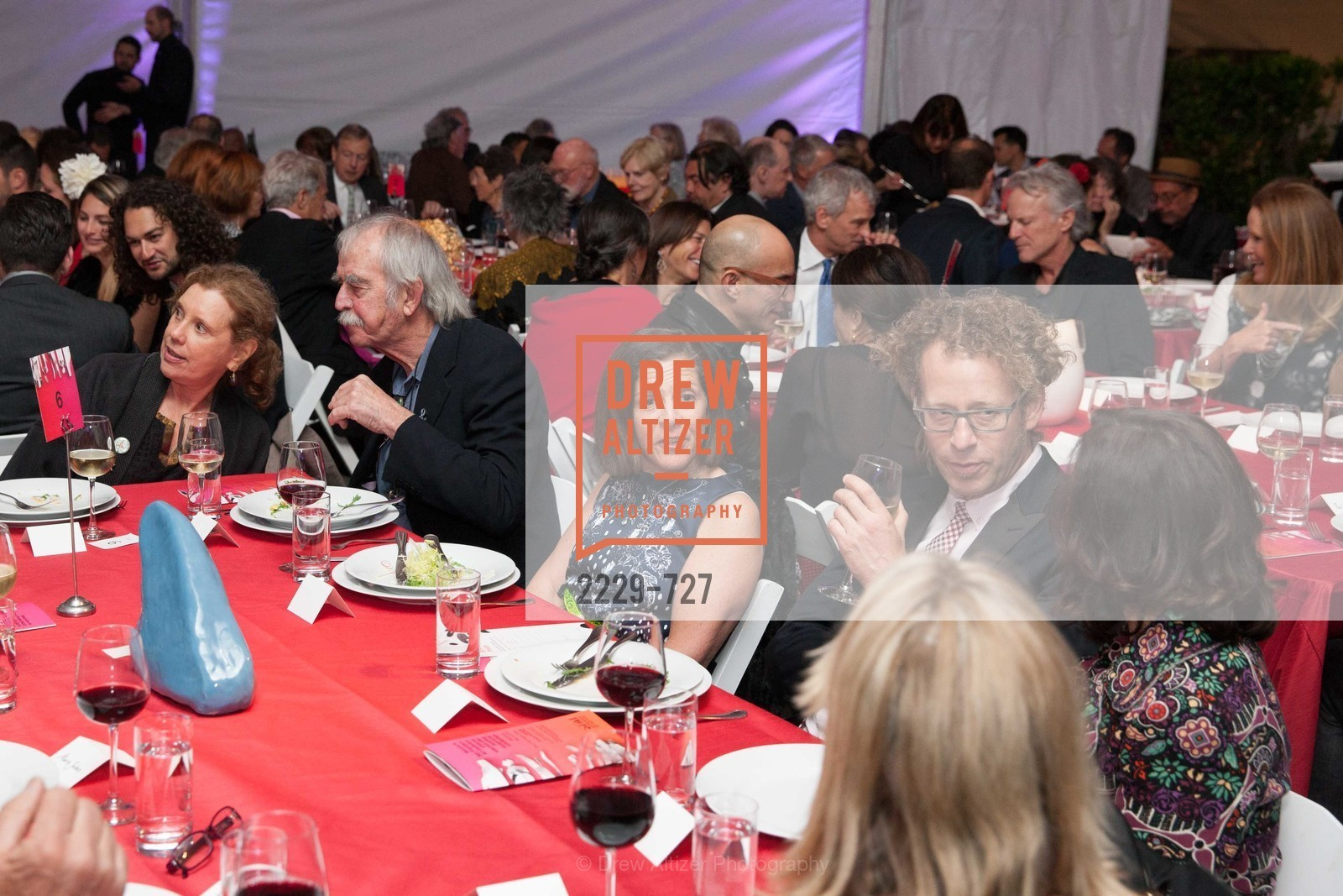 Marjorie Swig, SAN FRANCISCO ART INSTITUTE Gala Honoring Art Visionary and Advocate ROSELYNE CHROMAN SWIG, US, May 13th, 2015,Drew Altizer, Drew Altizer Photography, full-service agency, private events, San Francisco photographer, photographer california
