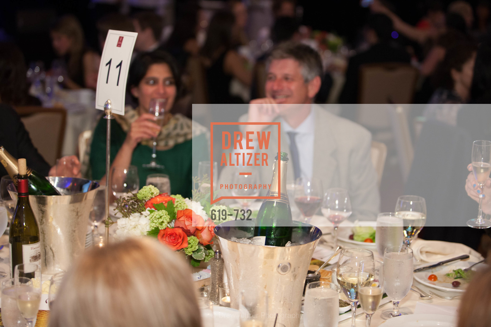 Atmosphere, CROHN'S AND COLITIS FOUNDATION'S 18th Annual California Wine Classic, May 16th, 2015, Photo,Drew Altizer, Drew Altizer Photography, full-service agency, private events, San Francisco photographer, photographer california