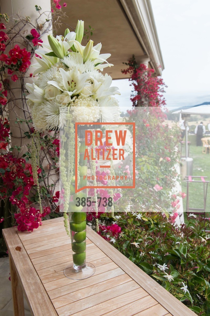 Atmosphere, LymeAid 2015, US, May 18th, 2015,Drew Altizer, Drew Altizer Photography, full-service agency, private events, San Francisco photographer, photographer california