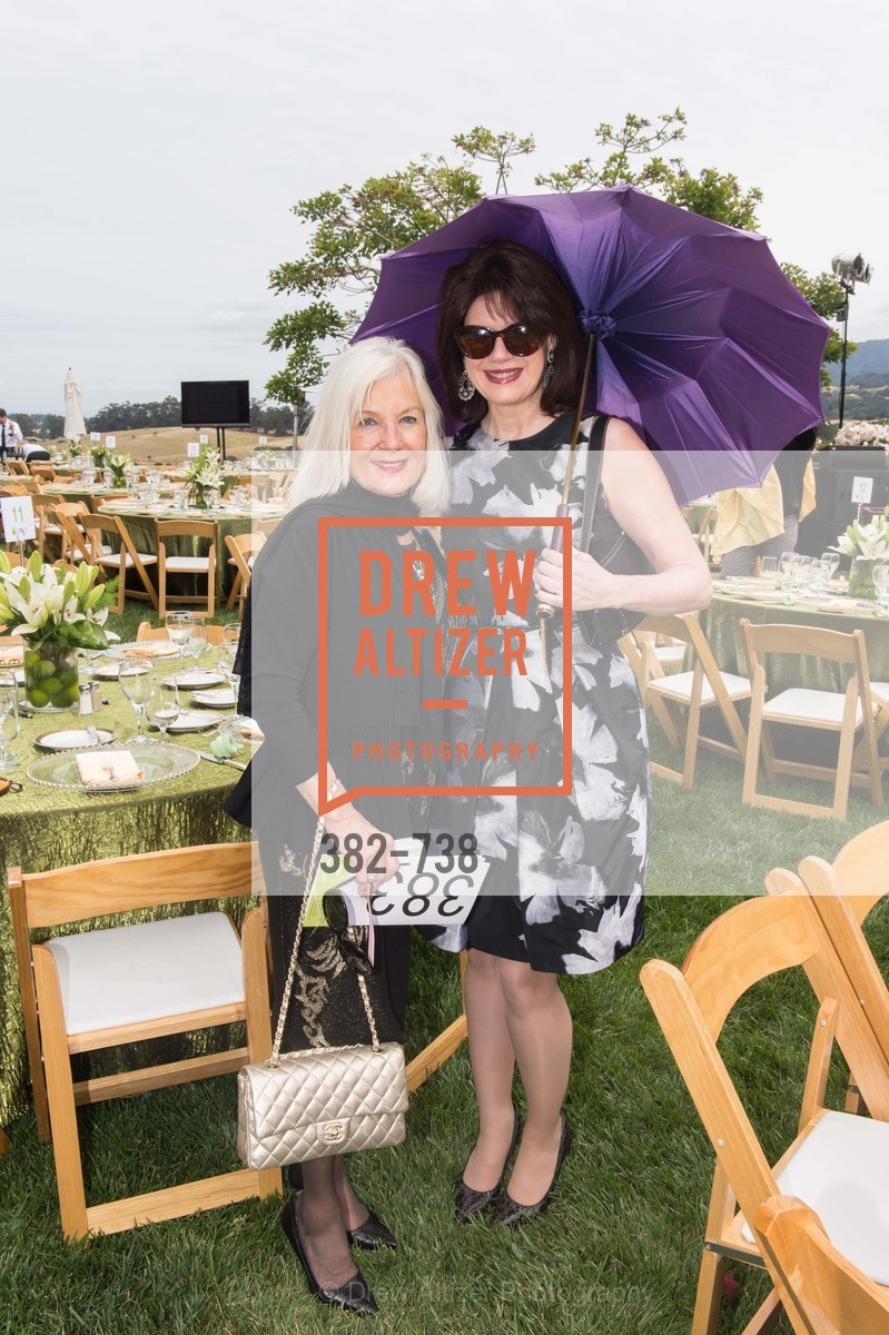 Arlene Inch, Elaine Mellis, LymeAid 2015, US, May 18th, 2015,Drew Altizer, Drew Altizer Photography, full-service agency, private events, San Francisco photographer, photographer california