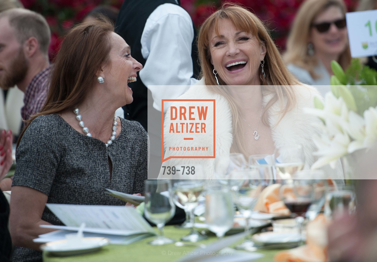 Elisabeth Thieriot, Jane Seymour, LymeAid 2015, US, May 18th, 2015,Drew Altizer, Drew Altizer Photography, full-service agency, private events, San Francisco photographer, photographer california