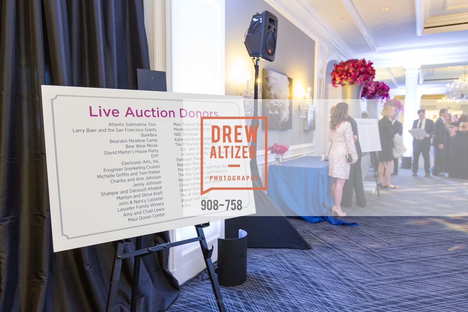 Atmosphere, JUVENILE DIABETES RESEARCH FOUNDATION  Hope Gala, US, May 30th, 2015,Drew Altizer, Drew Altizer Photography, full-service event agency, private events, San Francisco photographer, photographer California