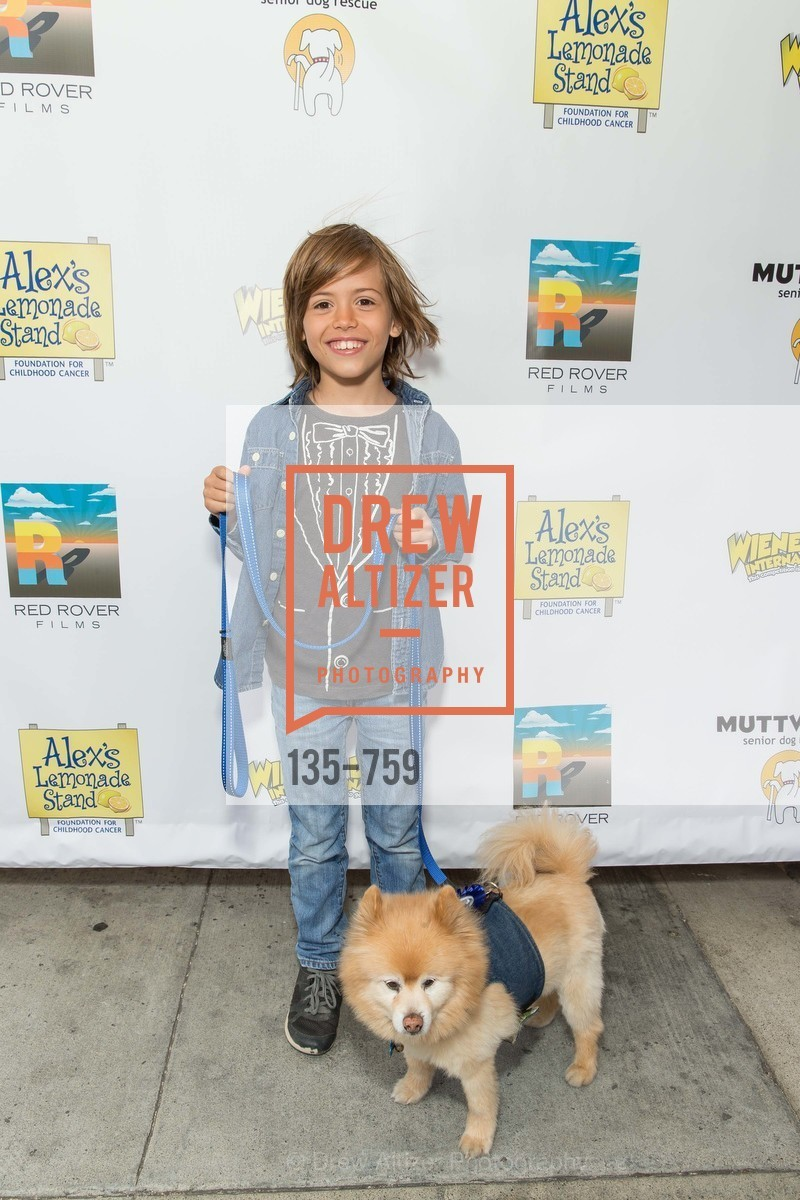 Benji Dawes, WEINER DOG, The Movie, Screening, US, May 31st, 2015,Drew Altizer, Drew Altizer Photography, full-service agency, private events, San Francisco photographer, photographer california