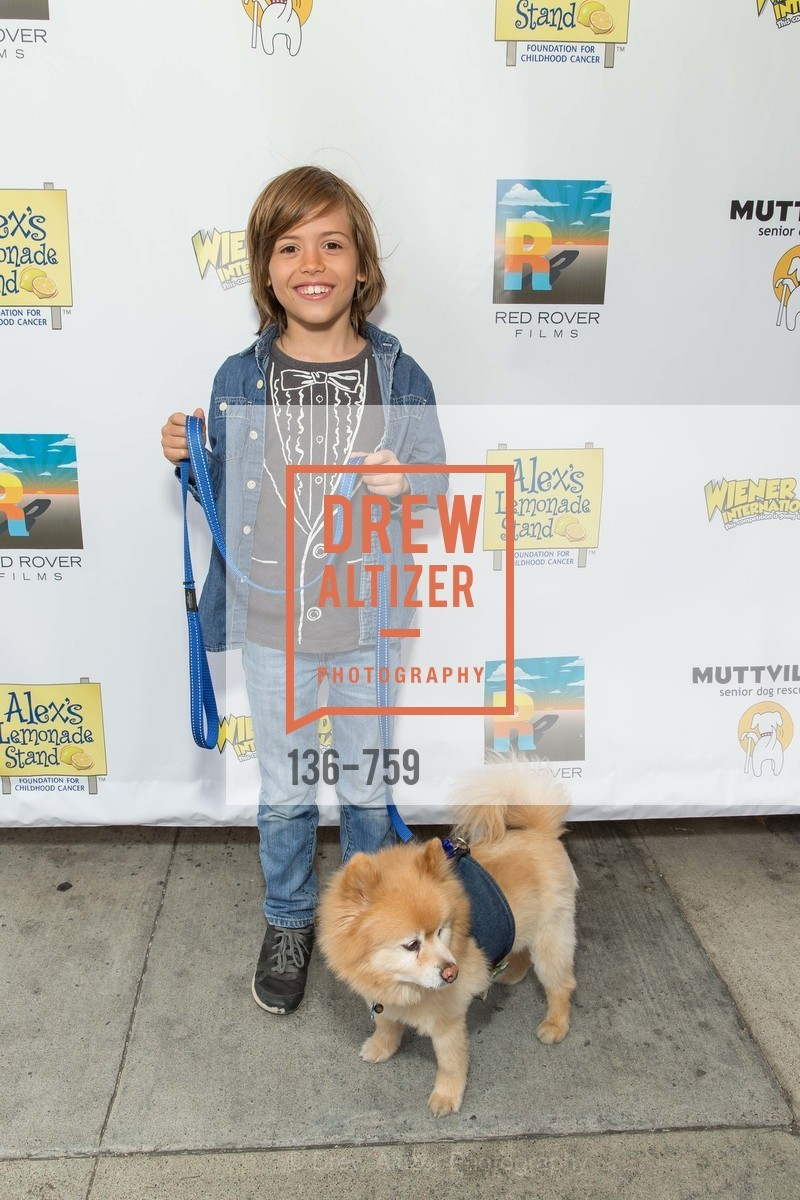 Benji Dawes, WEINER DOG, The Movie, Screening, The Vogue Theater. 3290 Sacramento St, June 1st, 2015,Drew Altizer, Drew Altizer Photography, full-service agency, private events, San Francisco photographer, photographer california