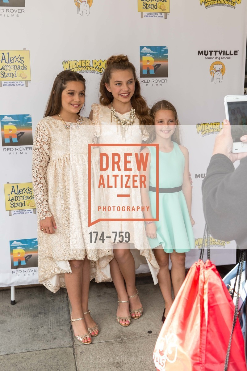 Emmy Perry, Caitlin Carmichael, Daisy Traina, WEINER DOG, The Movie, Screening, US, May 31st, 2015,Drew Altizer, Drew Altizer Photography, full-service agency, private events, San Francisco photographer, photographer california