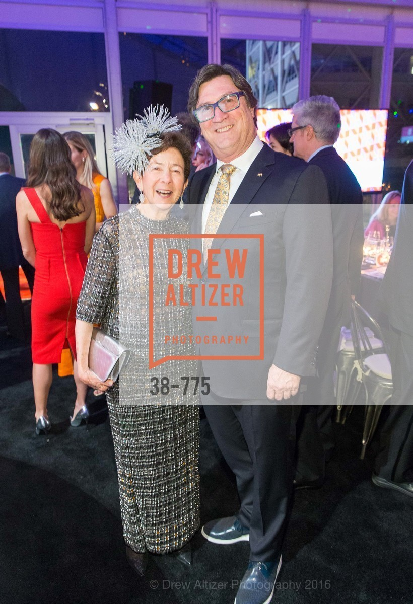 Roselyne Swig, Rob Steinberg, UC Berkeley Art Museum & Pacific Film Archive Gala, BAMPFA. 2120 Oxford Street, January 28th, 2016,Drew Altizer, Drew Altizer Photography, full-service agency, private events, San Francisco photographer, photographer california