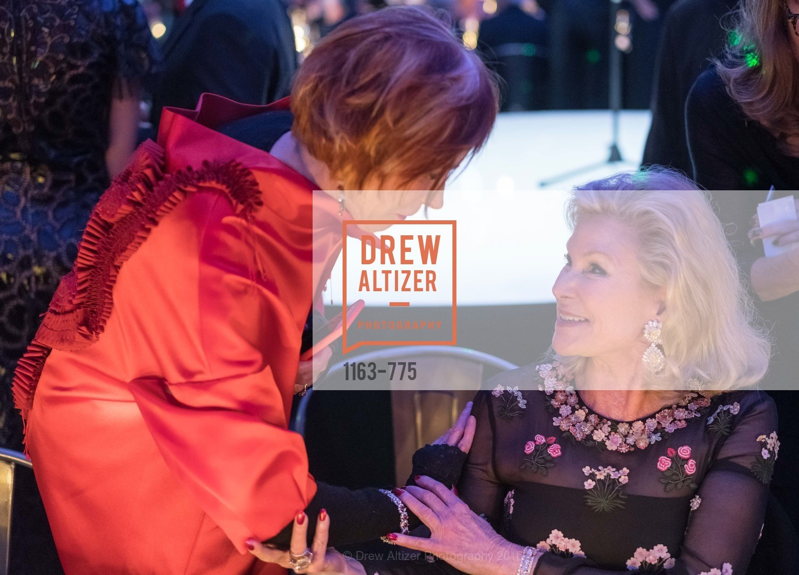 Norah Stone, Dede Wilsey, UC Berkeley Art Museum & Pacific Film Archive Gala, BAMPFA. 2120 Oxford Street, January 28th, 2016,Drew Altizer, Drew Altizer Photography, full-service agency, private events, San Francisco photographer, photographer california