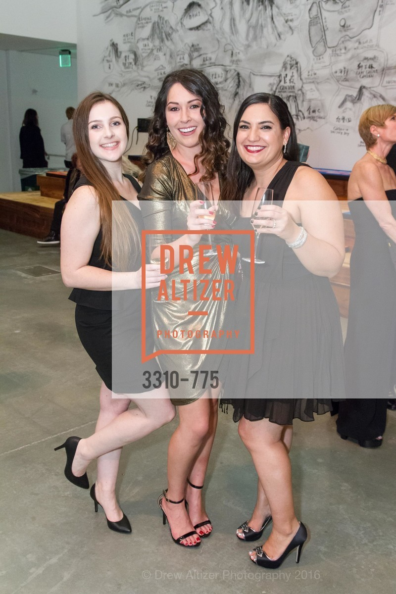 Morgan Pilcher, Natasha Best, Mia Gitlin, UC Berkeley Art Museum & Pacific Film Archive Gala, BAMPFA. 2120 Oxford Street, January 28th, 2016,Drew Altizer, Drew Altizer Photography, full-service agency, private events, San Francisco photographer, photographer california