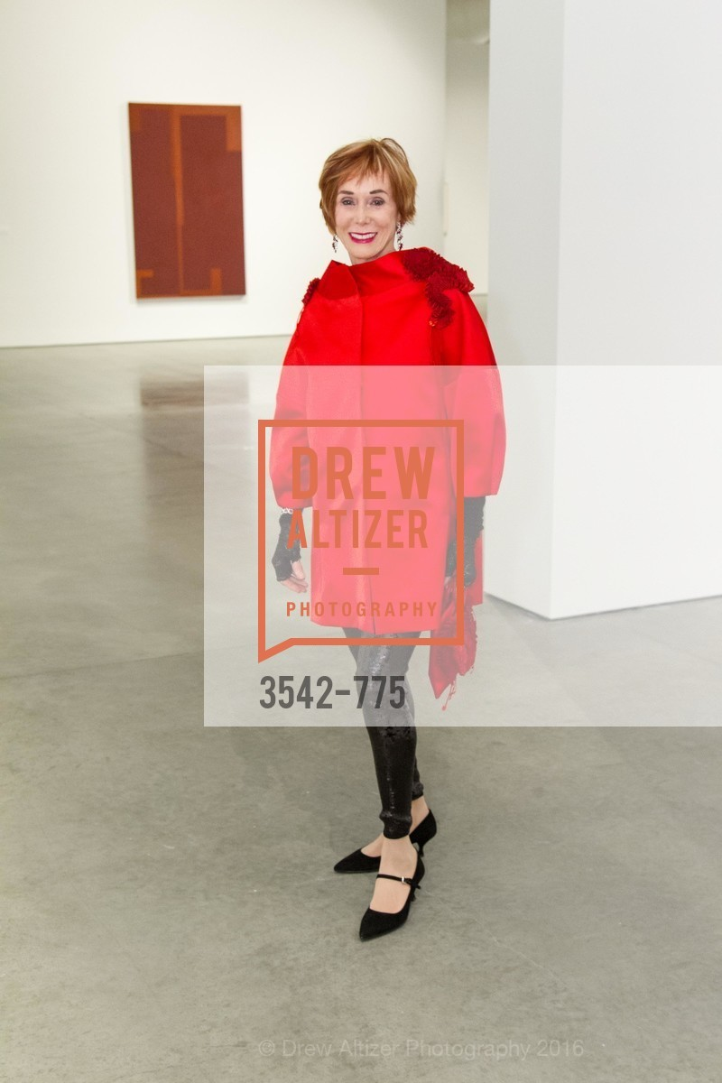 Norah Stone, UC Berkeley Art Museum & Pacific Film Archive Gala, BAMPFA. 2120 Oxford Street, January 28th, 2016,Drew Altizer, Drew Altizer Photography, full-service agency, private events, San Francisco photographer, photographer california