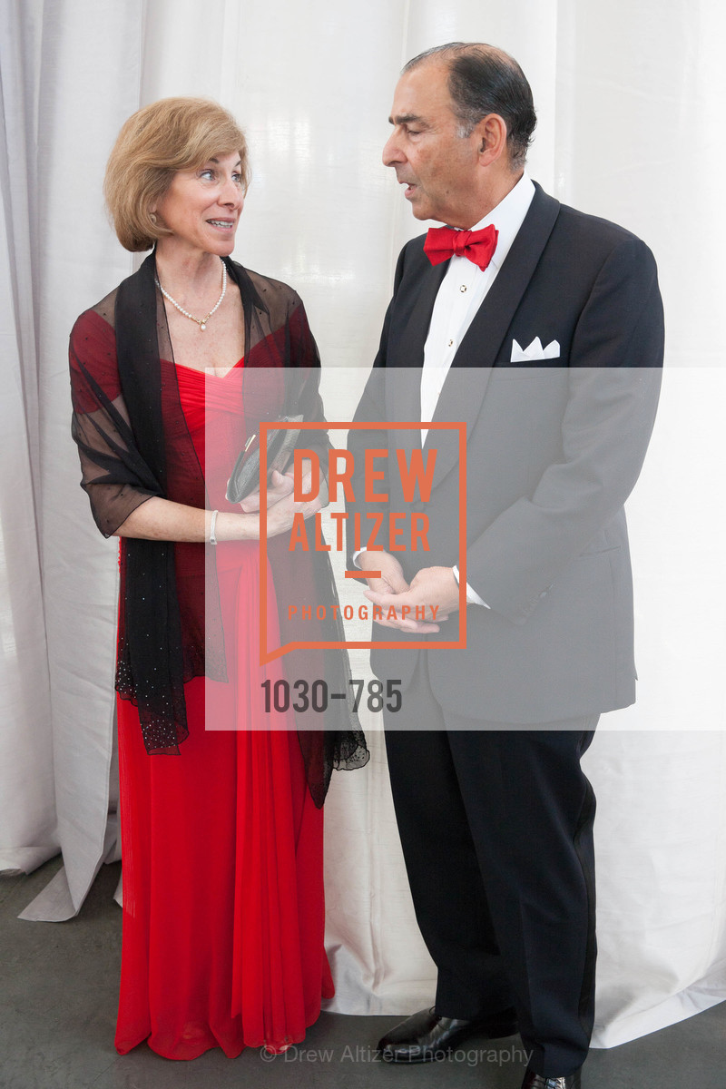 Gail McGovern, Alexander Mehran, 2015 RED CROSS Gala, US, April 11th, 2015,Drew Altizer, Drew Altizer Photography, full-service agency, private events, San Francisco photographer, photographer california