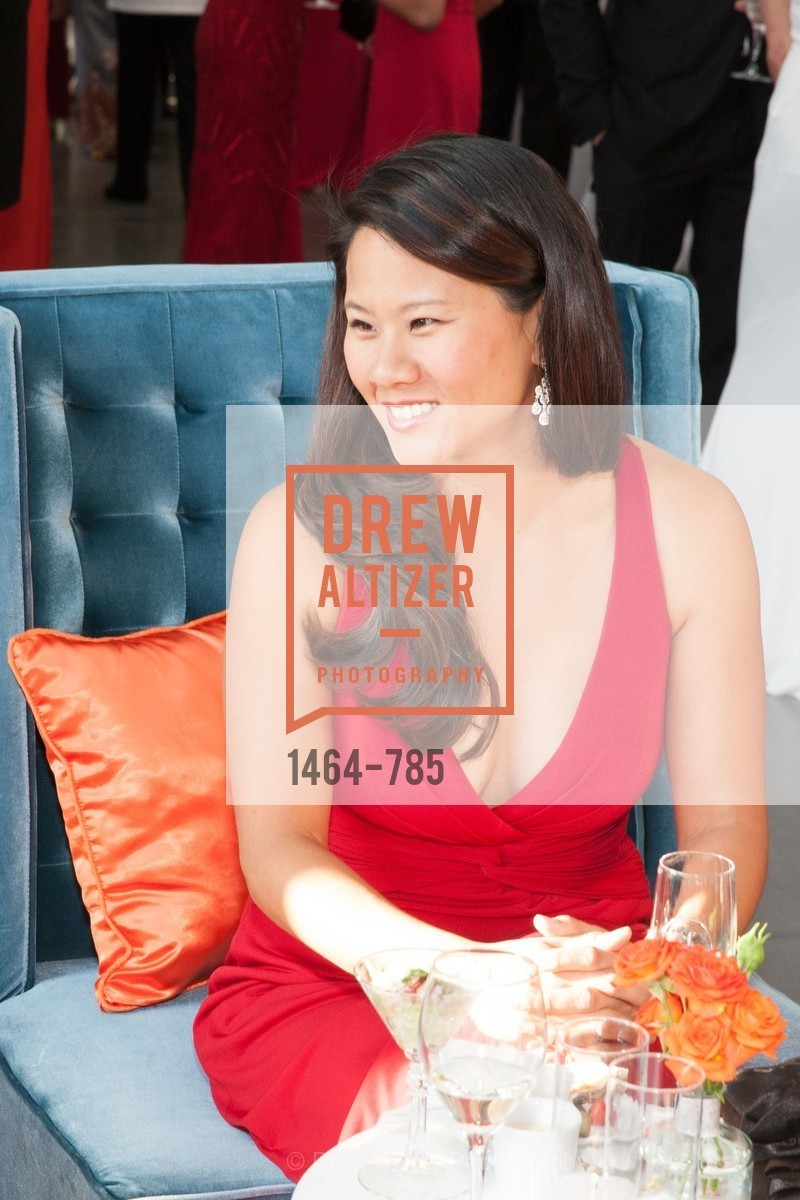 Top Picks, 2015 RED CROSS Gala, April 11th, 2015, Photo,Drew Altizer, Drew Altizer Photography, full-service agency, private events, San Francisco photographer, photographer california