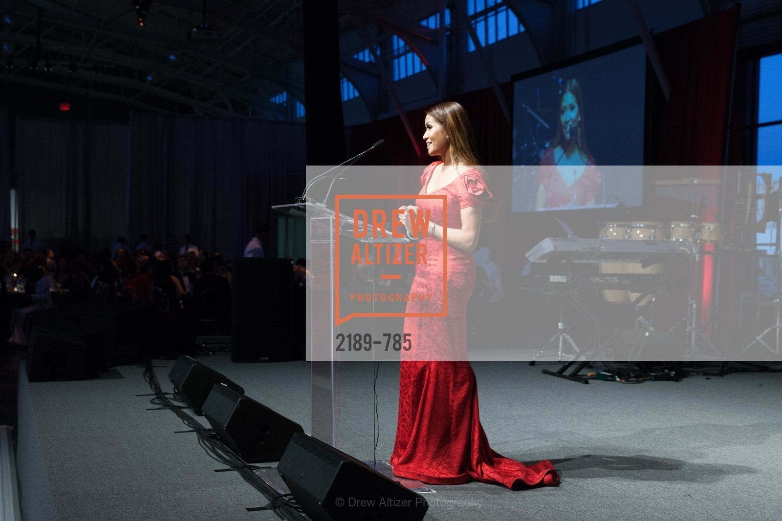Lillian Phan, 2015 RED CROSS Gala, US, April 12th, 2015,Drew Altizer, Drew Altizer Photography, full-service agency, private events, San Francisco photographer, photographer california