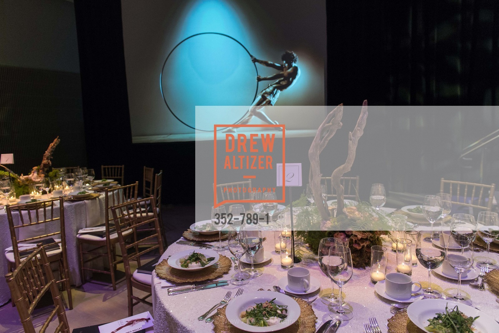 Atmosphere, ALONZO KING LINE'S Ballet Spring Gala 2015, US, April 12th, 2015,Drew Altizer, Drew Altizer Photography, full-service agency, private events, San Francisco photographer, photographer california