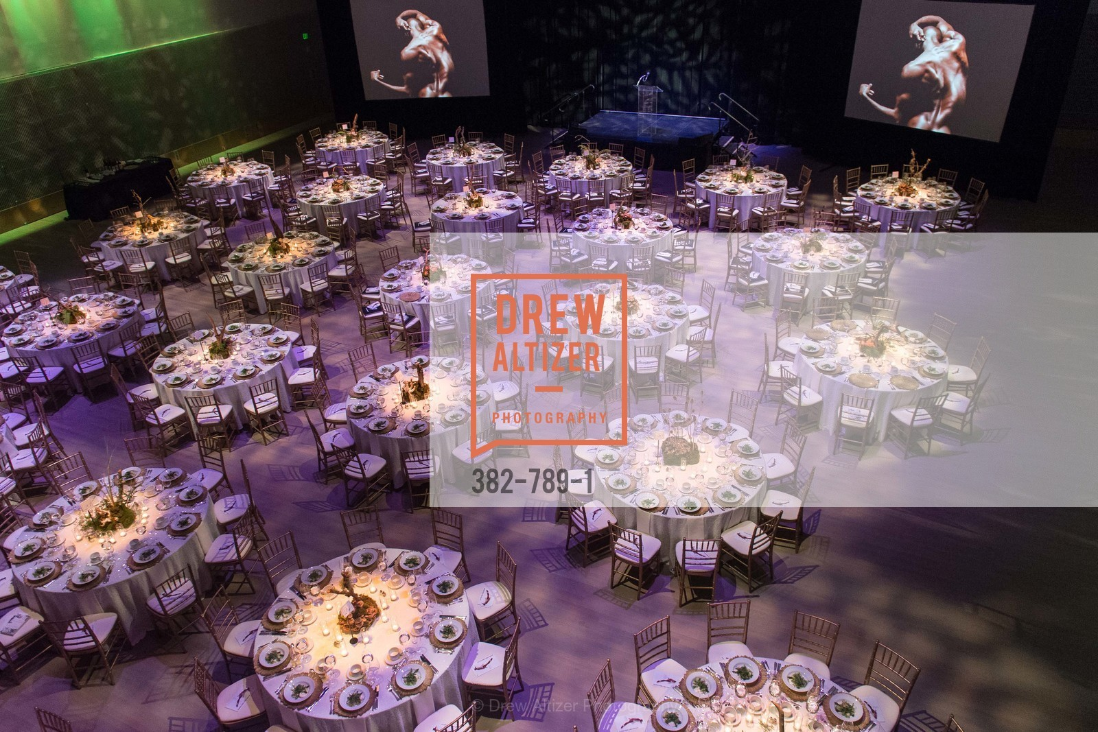 Atmosphere, ALONZO KING LINE'S Ballet Spring Gala 2015, US, April 12th, 2015,Drew Altizer, Drew Altizer Photography, full-service event agency, private events, San Francisco photographer, photographer California