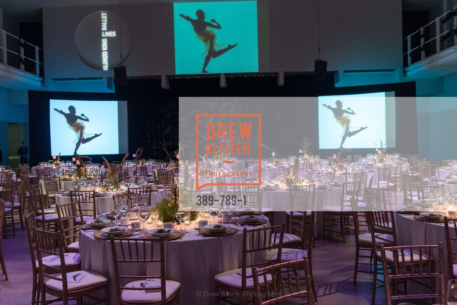 Atmosphere, ALONZO KING LINE'S Ballet Spring Gala 2015, US, April 11th, 2015,Drew Altizer, Drew Altizer Photography, full-service agency, private events, San Francisco photographer, photographer california