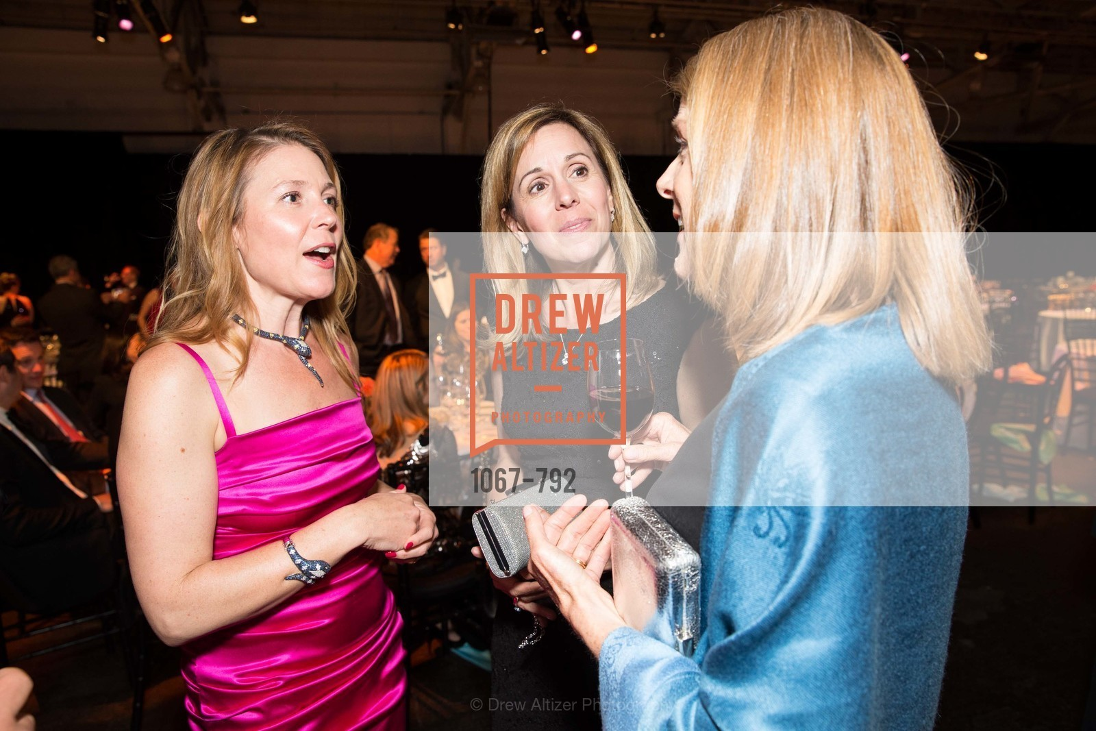 Christina Giguere, Linda Micheli, Debra Naughton, MEALS ON WHEELS OF SAN FRANCISCO'S 28th Annual Star Chefs and Vintners Gala, US, April 20th, 2015,Drew Altizer, Drew Altizer Photography, full-service agency, private events, San Francisco photographer, photographer california