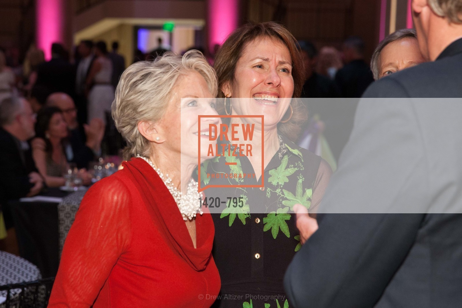 JoAnn Bertges, COMPASS FAMILY SERVICES Annual Spring Benefit:  Every Family Needs A Home, US, April 22nd, 2015,Drew Altizer, Drew Altizer Photography, full-service agency, private events, San Francisco photographer, photographer california