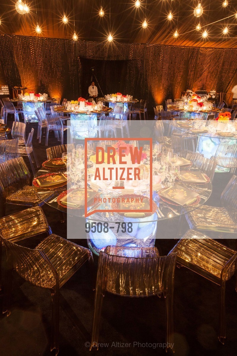 Atmosphere, CALIFORNIA ACADEMY OF SCIENCES - Big Bang Gala 2015, US, April 24th, 2015,Drew Altizer, Drew Altizer Photography, full-service event agency, private events, San Francisco photographer, photographer California