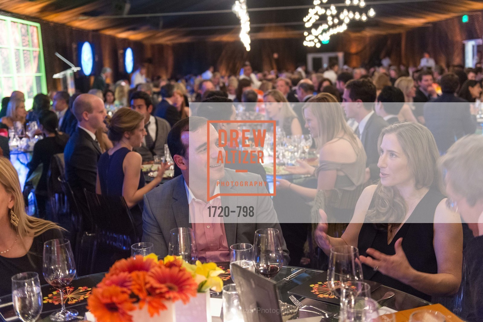 Extras, CALIFORNIA ACADEMY OF SCIENCES - Big Bang Gala 2015, April 23rd, 2015, Photo,Drew Altizer, Drew Altizer Photography, full-service agency, private events, San Francisco photographer, photographer california