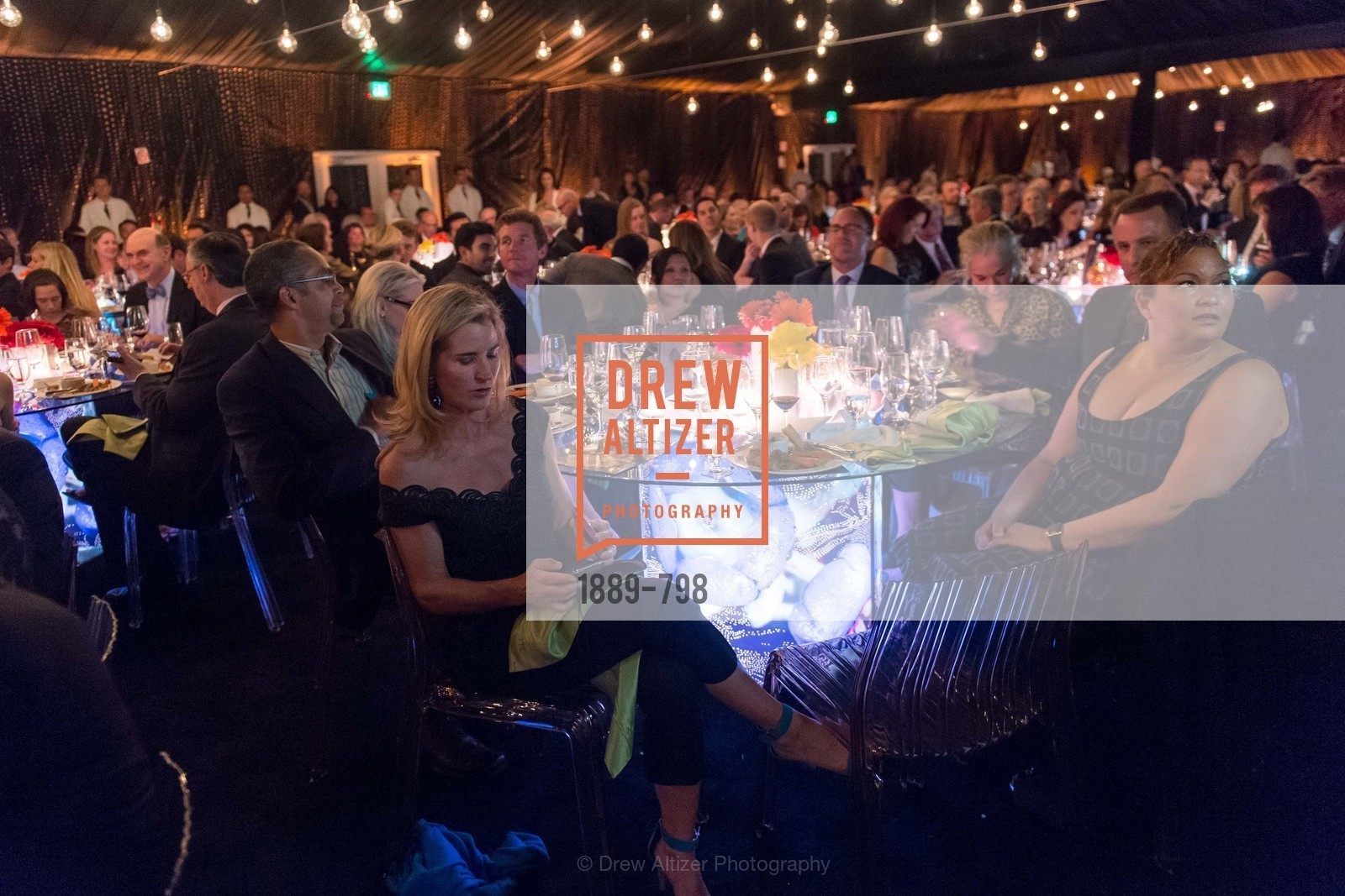 Summer Tompkins Walker, CALIFORNIA ACADEMY OF SCIENCES - Big Bang Gala 2015, US, April 23rd, 2015,Drew Altizer, Drew Altizer Photography, full-service agency, private events, San Francisco photographer, photographer california