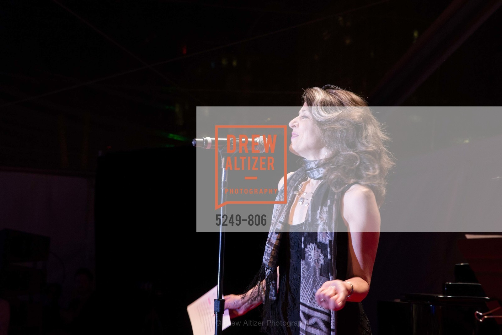 Performance By Melissa Smith, A.C.T. Gala Come Get Stranded, US, April 25th, 2015,Drew Altizer, Drew Altizer Photography, full-service agency, private events, San Francisco photographer, photographer california