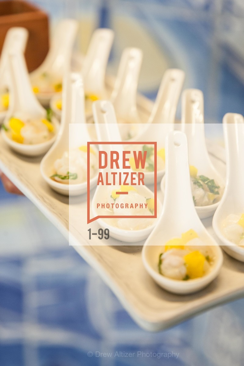 Extras, Common Sense Media Awards 2015, May 13th, 2015, Photo,Drew Altizer, Drew Altizer Photography, full-service event agency, private events, San Francisco photographer, photographer California